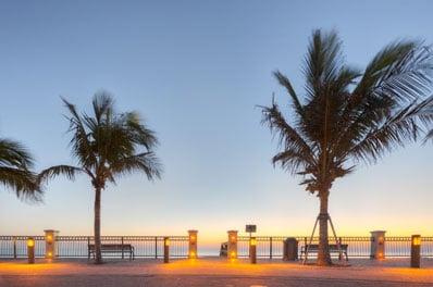 Vero Beach Landscape